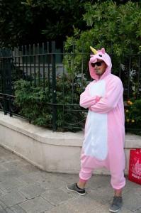 Un ludonome déguisé en licorne rose