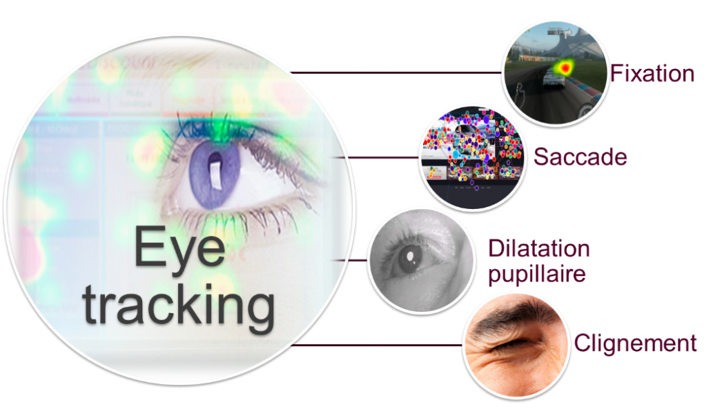 L'Eye Tracking permet de récupèrer les fixations, les saccades, la dilatation pupillaire et les clignements d'yeux